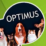 Página web corporativa OPTIMUS