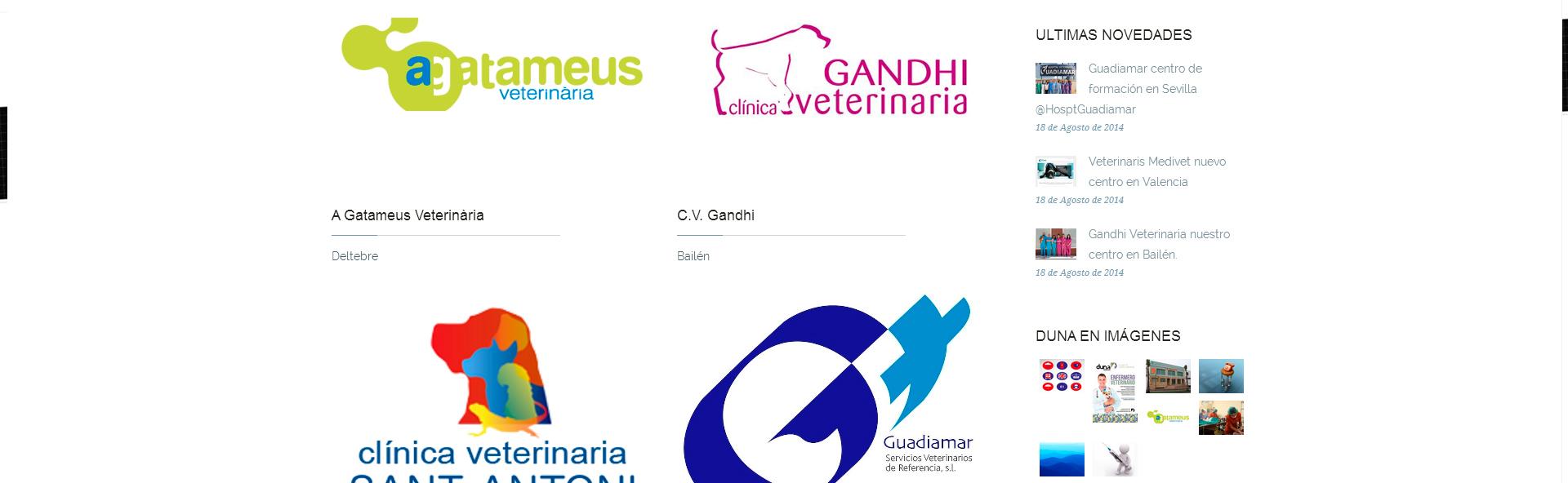 Detalle de diseño - Diseño web Duna